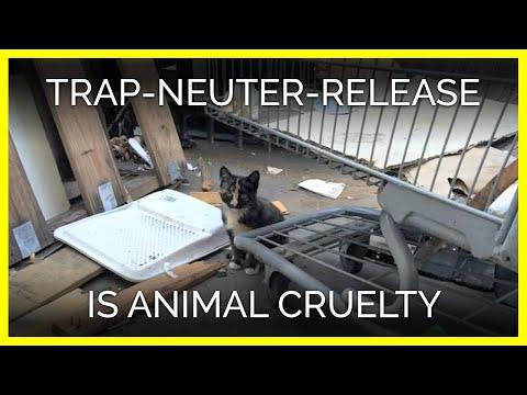 Trap-Neuter-Release—It