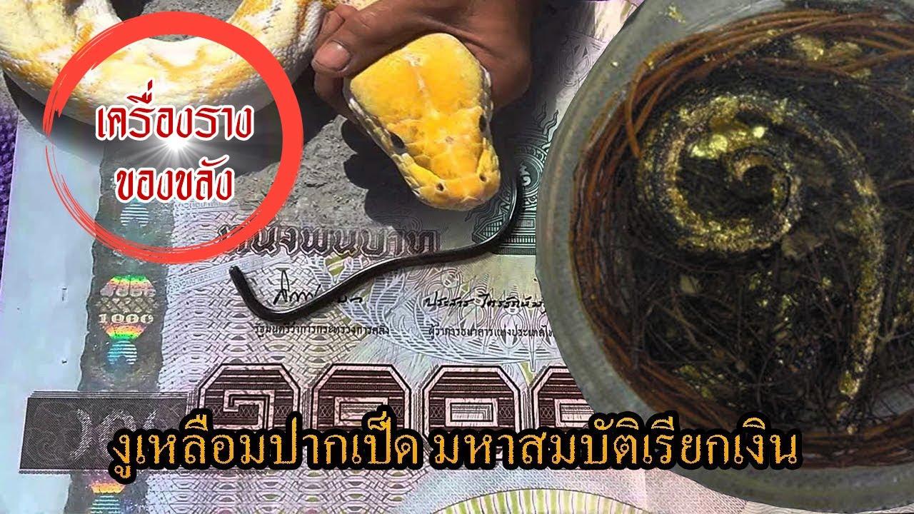 🔴EP9: งูเหลือมปากเป็ด มหาสมบัติเรียกเงิน