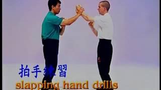 Slapping Hand Drills 3 - Pak Sau 3