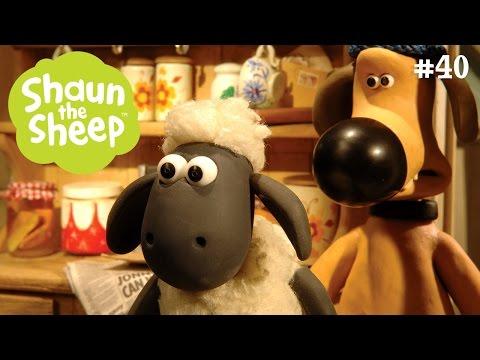 Lại gặp người ngoài hành tinh - Những Chú Cừu Thông Minh