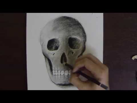 Skull Drawing with Charcoal on Paper - Time Lapse