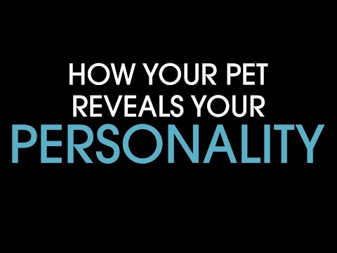 How your pet reveals your personality