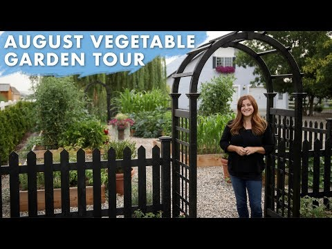 August Vegetable Garden Tour 🌿// Garden Answer