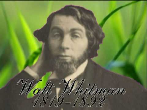 Walt Whitman Leaves of Grass #2: Song of Myself cont