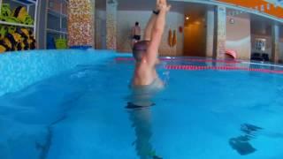 Как научиться плавать баттерфляем за 6 уроков. Урок 1