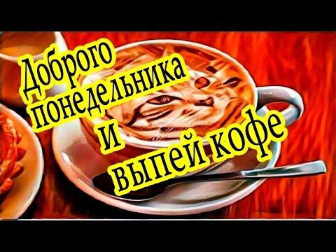 Доброго понедельника -  выпей кофе - прекрасной недели