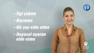 Otizm - 11.Program