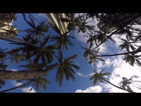 Honolulu City & Beach  - Oahu I Hawaii I USA