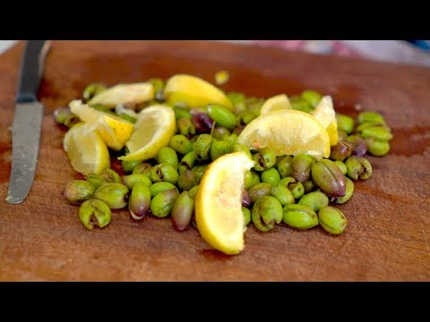 How To Pick And Pickle Olives In Nazareth