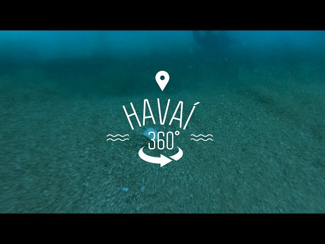 Partiu Oahu   Havaí 360º   Canal OFF