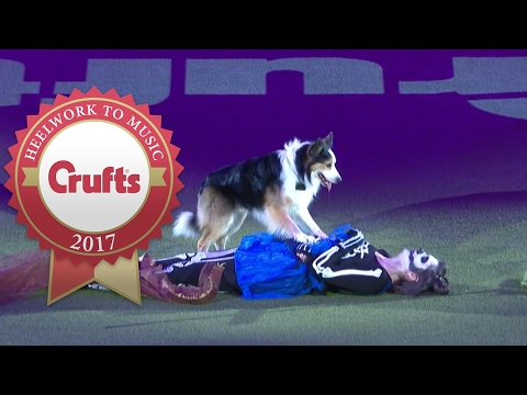 Freestyle Heelwork To Music Competition Winner | Crufts 2017