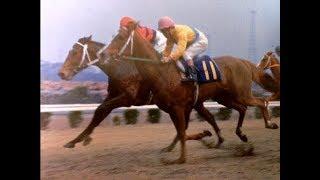 1970年皐月賞 やっぱりムーティエだ~! ~0LD競馬ファンに懐かしい名実況