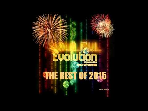 Soulful Evolution The Best of 2015 Special (129)