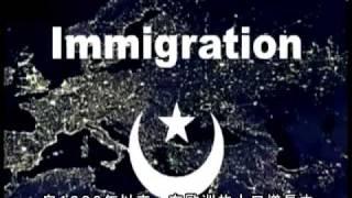 Muslim Demographics - 中文字幕