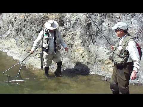 Fly Fishing At Poronui New Zealand