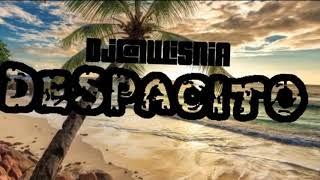Gang Albanii - Despacito (Dj@WiSNIA Blend)