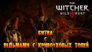 The Witcher 3: Wild Hunt - Цири битва с Ведьмами с Кривоуховых топей!
