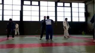 Japanese Judo Training II