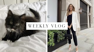 SURPRISING MY MUM WITH A KITTEN! VLOG | Kate Hutchins