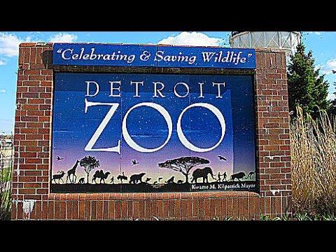Detroit Zoo Adventure Field Trip
