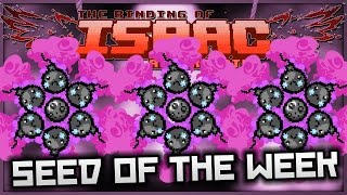 the binding of isaac afterbirth seed of the week endless orbiting nuke bombs