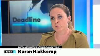 Halalslagtning - Nynne Bjerre Christensen som muslimernes advokat - fødevareminister Karen Hækkerup