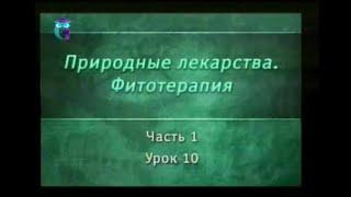 Фитотерапия. Урок 1.10. Лекарственные растения, действующие на нервную систему