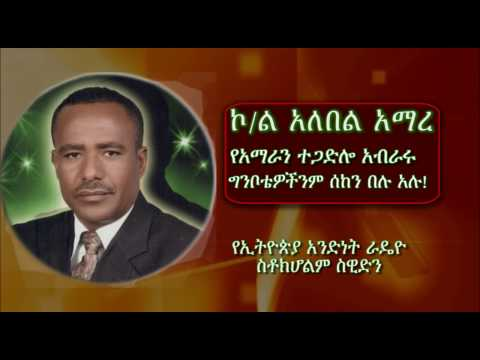 Colonel Alebel Amare's Interview with Ethio Sweden Radio April 1 2017