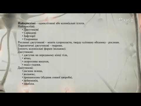 Телеканал Київ: #ВідкритийУрок2020 «Біологія» для 11 класів (09.04.20)