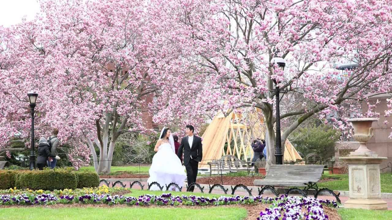 Meadowlark Gardens Vienna Virginia Wedding Photography By Pavel Capitol Hill The Smithsonian