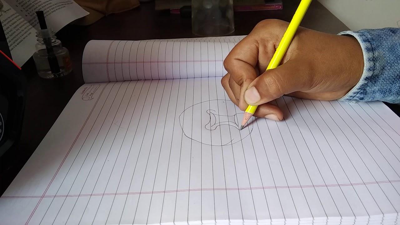 Class 10 Brain diagram - YouTube