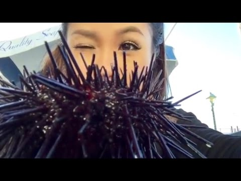 Anh Minh First Time Eating LIVE Sea Urchin Known As Uni