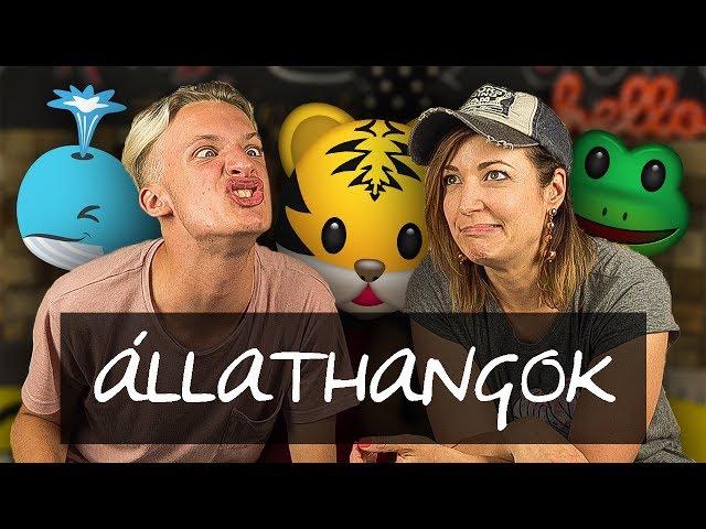 ÁLLATHANG UTÁNZÁS | feat. Csorba Anita