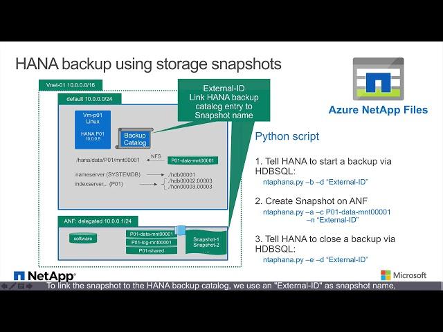 Azure NetApp Files - SAP HANA Backup in Seconds | NetApp Blog