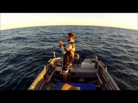 Fishing offshore mooloolaba 3/8/13