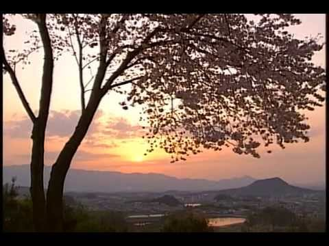 日本の歴史 02  飛鳥 奈良(仏教と聖徳太子)
