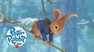 #StayHome Peter Rabbit - Saving Cottontail   Cartoons for Kids