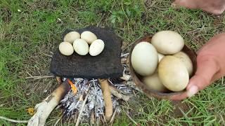 Primitive Technology - roasted egg ducks on rock- Cook egg ducks on a rock