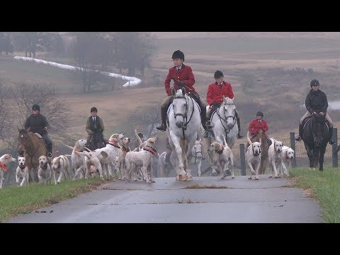 Foxhunting Club Celebrates Horses, Hounds, And History