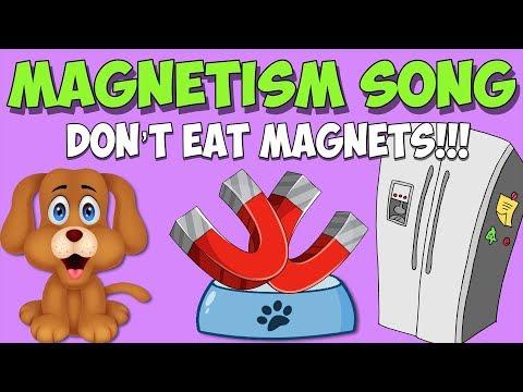 Magnet Song- Don't Eat Magnets!