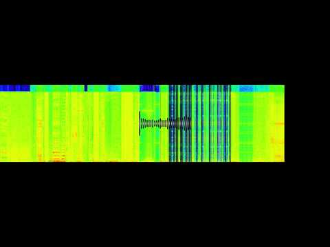 Binary converted to audible sounds.