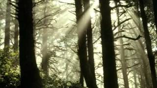 Samael - Last Benediction (Bosques Oscuros)