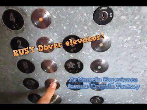 BUSY Single Dover Scenic Hydraulic Elevator Crayola Experience