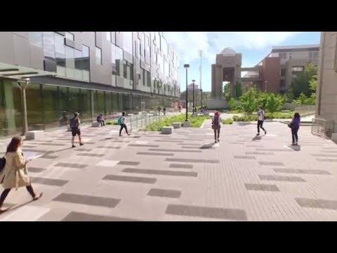 Global Health at York University