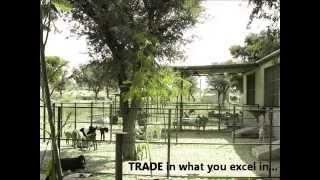 Goat Farm Management | Progress Highlights 2011-2012 of Qureshi Farm, Rajasthan