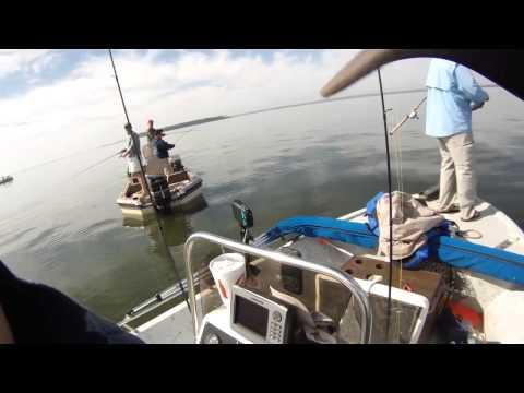Lake Livingston White Bass Vertical Jigging With A Slab