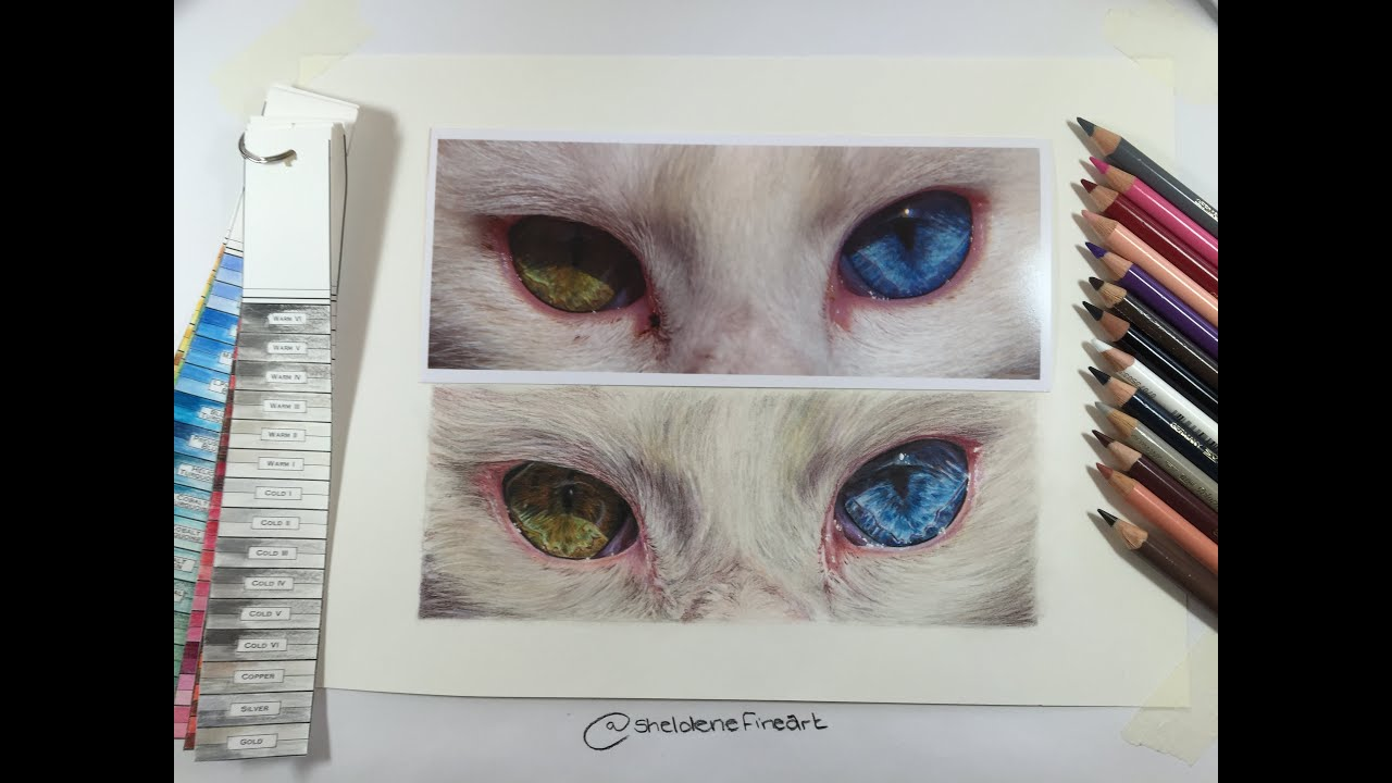 Timelapse  How To Draw A Cats Eyes