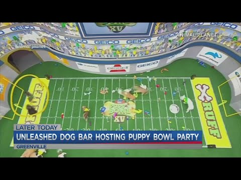 Puppy Bowl Watch Party