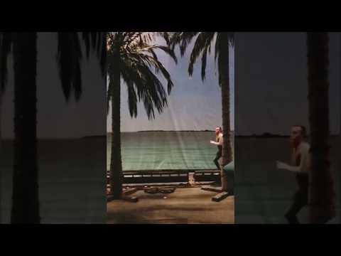 Slo-mo Miami Baywatch Pineapple Dance Party (by Stephane Nicoli, 2107).