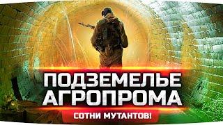 СМЕРТЕЛЬНАЯ АРЕНА — Джов vs Мутанты ● Получил детектор «Велес»! ● STALKER RP #24
